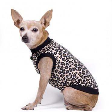 Camiseta para perros estampado leopardo de caninetto barcelona