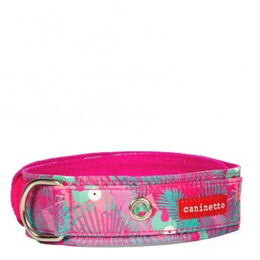 Collar para perros estampado Tucanes exclusivo de caninetto