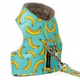 Arnes Bananas