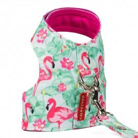 Arnes Flamingos
