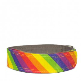 Collar Arco Iris para perros de caninetto