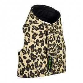 Arnes Leopardo de caninetto barcelona