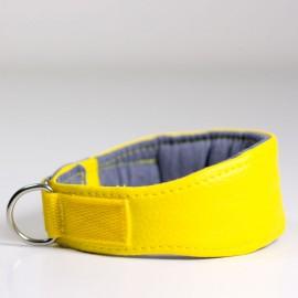 Collar para piccolos, whipets y galgos Amarillo de caninetto