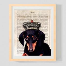 Teckel Negro con corona