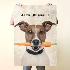 Jack Russell con zanahoria
