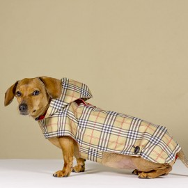 Chubasquero British para perros de caninetto barcelona
