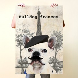 Bulldog francés en Paris