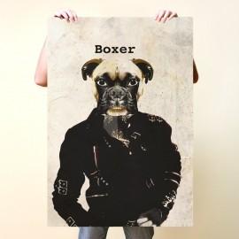 "Boxer ""Bad"""