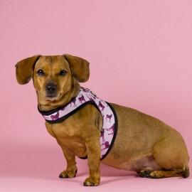 Zebra Arnes Sport para perros de caninetto